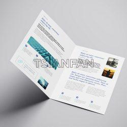 公司画册设计制作_厦门画册宣传册设计公司_Logo设计厂家直销定制-PPE450
